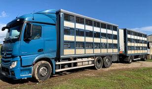 MERCEDES-BENZ Actros 2548 for pigs transport livestock truck + livestock trailer