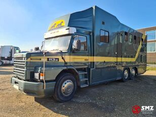 SCANIA 113 paarden/mobilhome livestock truck